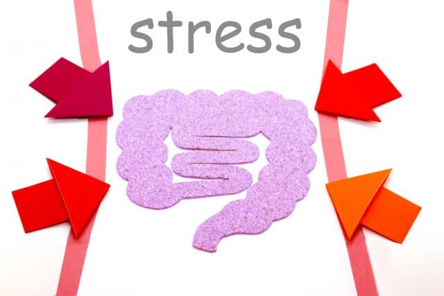 腸にストレスがかかっている状態