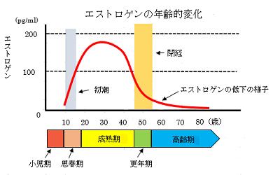 エストロゲンの年齢的変化